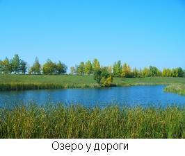озеро бабье воронежская область фото